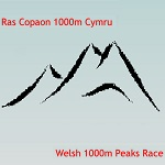 Welsh1000m-post